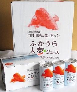 ふかうら人参ジュース(30本) B-5