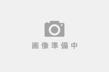 2ヶ月間長期熟成! 青森県産「黒にんにく」【バラ200g×2袋】