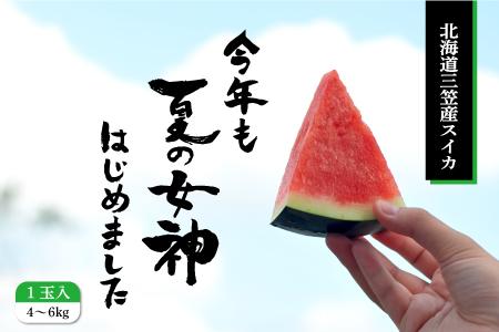 3.【先行予約】【数量限定】夏の女神(黒皮スイカ) 1玉入(大玉)