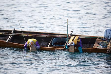 RT939 広田湾漁協からお届け!焼きウニ塩ウニセット