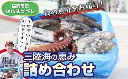 RT841 【特選】三陸海の恵み詰め合わせ【下処理可】