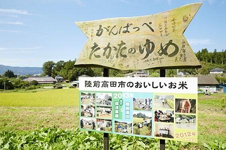 RT507 陸前高田市の地域ブランド米【たかたのゆめ】定期便(6回)