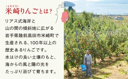 RT670 米崎りんご品種おまかせ3㎏【11~12月発送】