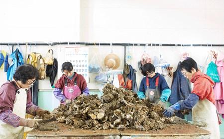 RT394 【期日指定可】マルテン水産の殻付き牡蠣30個