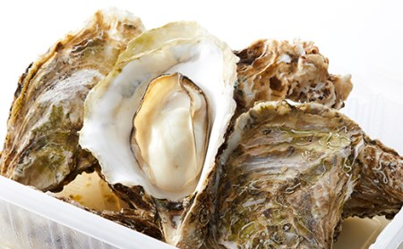 RT835 広田湾漁協からお届け!レンジで蒸し牡蠣セット