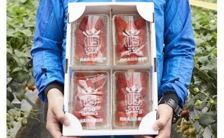 RT821 松田さん家の完熟イチゴ【紅ほっぺ200g×4パック】