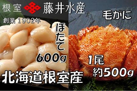 【北海道根室産】お刺身帆立貝柱300g×2P・ボイル毛がに約500g×1尾 C-42037
