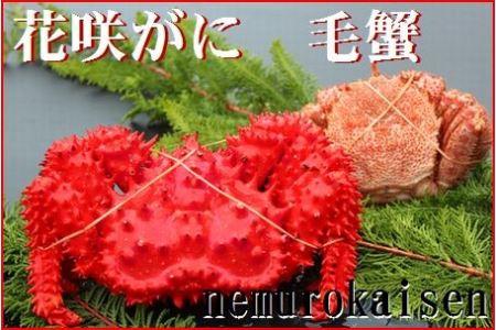 FA-19006 北海道根室産 花咲ガニと毛ガニの食べ比べセット