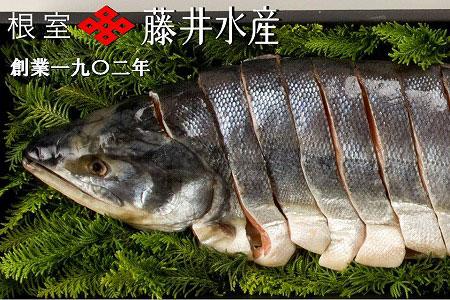 FA-23011 北海道根室産 新巻鮭切身