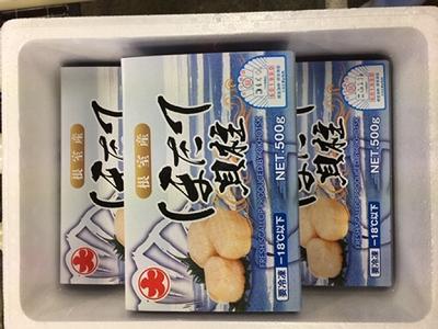 B-01010 【北海道根室産】お刺身ほたて1.5kg