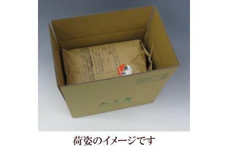 新登場の高級米 岩手県奥州市産 金色の風 白米 5kg 令和2年産 [AC27]