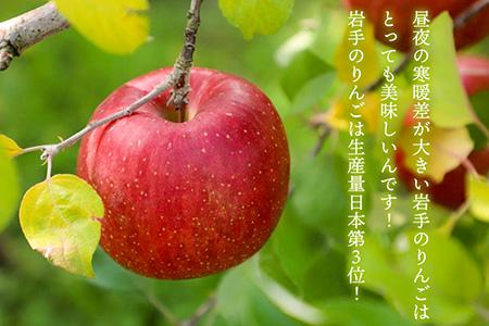 JAいわて中央の美味しいりんご サンふじ10kg