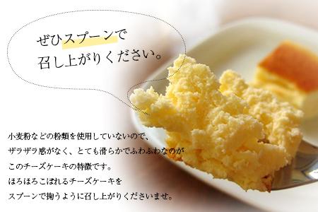 【チーズケーキ食べ比べセット】プレーン&レア