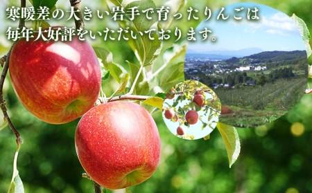 ふじむら農園のりんご(サンふじ)約5kg