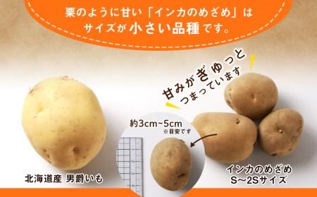 【2021年新じゃが】インカのめざめ S~2Sサイズ 20kg 予約開始 【野菜・じゃがいも】 お届け:2020年9月上旬より順次出荷
