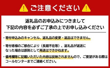 【定期便12ヶ月連続】キリン一番搾り生ビール<千歳工場産>350ml(24本)