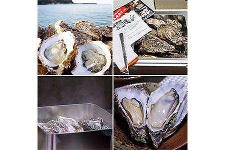 宮城県石巻市 岬焼かき産直セット