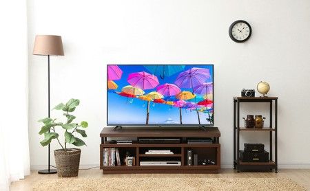 4K対応テレビ 49インチ LT-49B620 1台