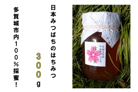 A010 史都多賀城日本みつばちの蜂蜜300g