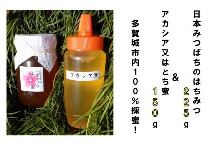 A011 史都多賀城日本みつばちの蜂蜜225gとアカシア又はとち蜜150g