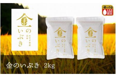 【新米】【令和2年産】金のいぶき 玄米 2kg(1kg×2袋)