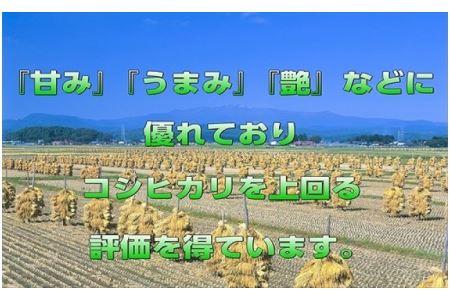 【12ヶ月定期便】宮城県栗原産「つや姫」一等米限定 毎月5kg×12ヶ月
