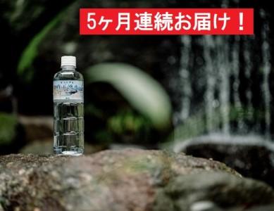 【5ヶ月連続】蔵王湧水500ml×24本
