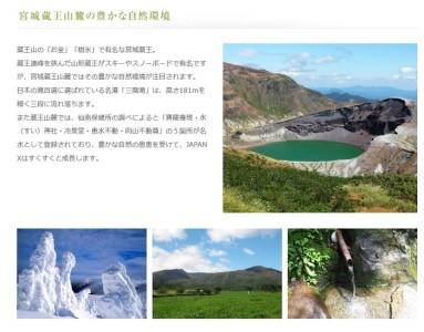 【10ヶ月連続】JAPAN X豚小間1.5kg&家庭用牛タン(塩味)600g/計2.1kg【定期便】【訳あり】