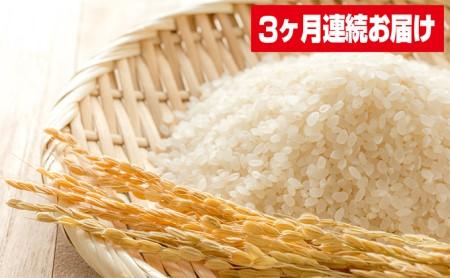 定期便 令和元年産 ササニシキ 10kg×3回 30kg