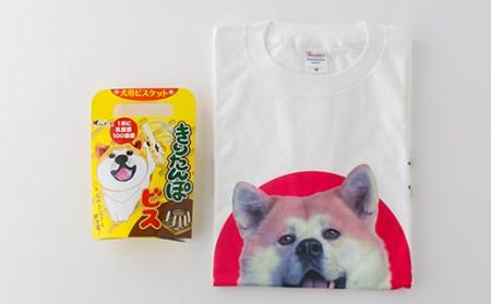 秋田犬Tシャツときりたんぽビスのセット
