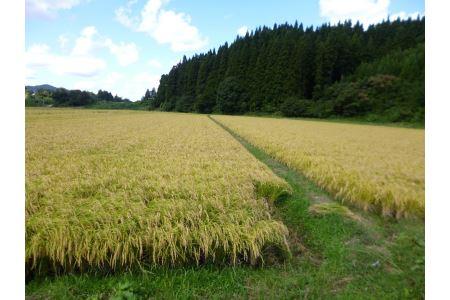 B26338【発送は令和2年11月から!】農家自慢のお米セット(あきたこまち)9kg(玄米5kg 精米2kg×2袋)
