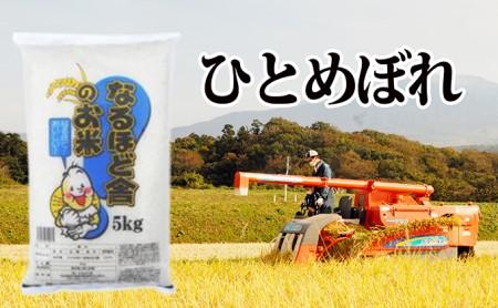 秋田県産ひとめぼれ 白米10kg(5kg×2)