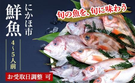 日本海の獲れたて鮮魚詰合せ(大)下処理済み