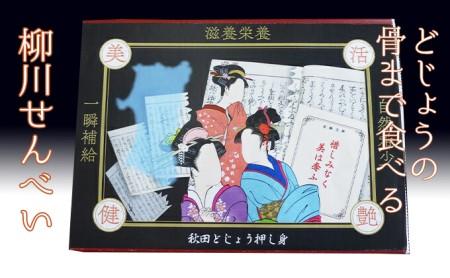 にかほ産秋田どじょうせんべい10g×2袋