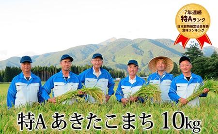 農家直送 特A あきたこまち 10kg 秋田県仙北市産
