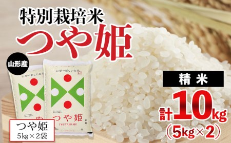 FY20-637 [令和2年産]山形産特別栽培米つや姫10kg(5kg×2)