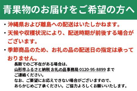 FS20-004 【令和3年産先行予約】[定期便5回] フルーツ定期便山形定番セット