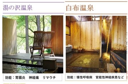 033-012 米沢八湯温泉共通利用券10枚組(寄附金3万4千円コース)