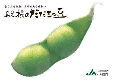 A01-641 鶴岡特産 殿様のだだちゃ豆(前期)(1.5kg)