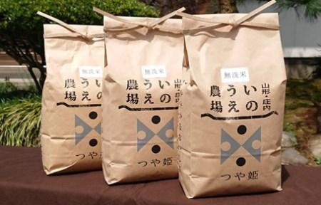 A02-005 【令和2年産】井上農場の特別栽培米つや姫無洗米(2kg×3袋)計6kg