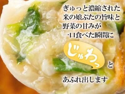 SA0127 米の娘ぶた餃子 50個
