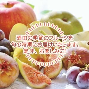 SE0077 《3回定期便》農家直送 こだわりのフルーツ定期便 (いちご・庄内メロン・いちじく)
