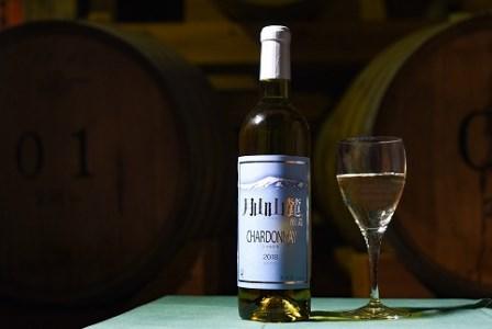 山形の地ワイン 【月山山麓】 シャルドネ セイベル 白ワイン 2本セット (720ml×2本) 015-E17
