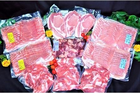 0006-2012 山形県産豚肉と国産牛スジ ボリュームセット