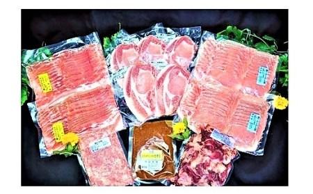 0006-2013 山形県産豚肉と国産牛スジ 豪華セット