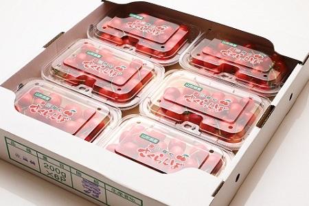 0103-2003 さくらんぼ(佐藤錦)1.2kg M・Lサイズ