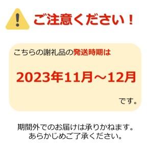 ご家庭用訳ありリンゴ(サンふじ)約10kg_H085(R3)