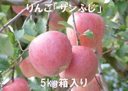 りんご「サンふじ」5kg 寄附金額:10,000円