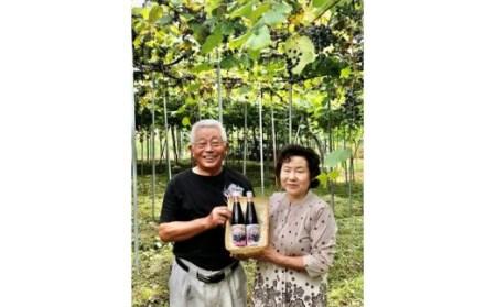 011G.尾花沢産完熟山ぶどう原液果汁(山ぶんど・500ml×2本)