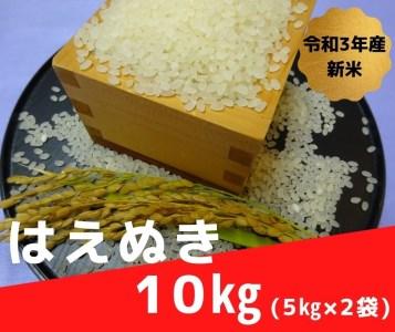 【令和3年産新米・予約】尾花沢産はえぬき精米10kg(5kg×2袋)【201P】